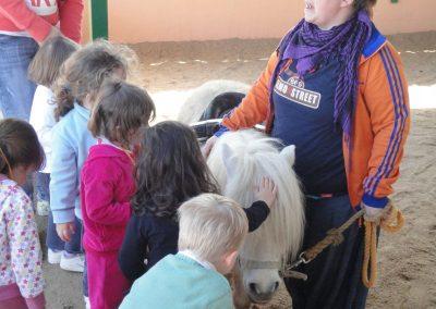 Granja-escuela-pony-resize-800x600